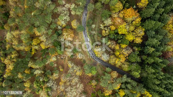 1061550162 istock photo Top view of turn road bend in autumn pine forest. 1071330928
