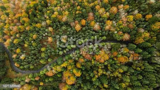 1061550162 istock photo Top view of turn road bend in autumn pine forest. 1071330940