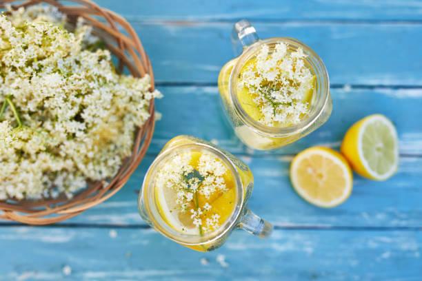 Top view of two glasses of elderflower lemonade of elderberry flowers stock photo