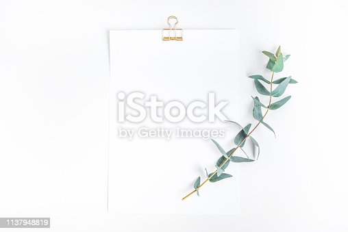 istock Top view of white notepaper with eucalyptus plant on worktable.minimalist style 1137948819