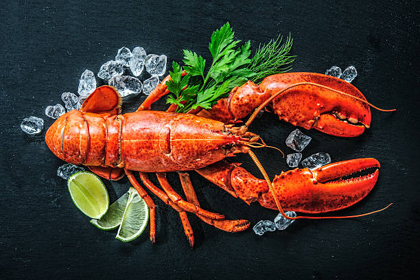 top view of whole red lobster with ice and lime - krab gerecht stockfoto's en -beelden