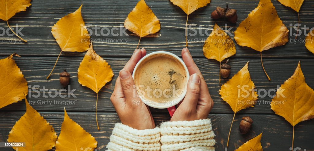 Top view of woman holding hands cup cappuccino on  wooden table. Panoramic banner web site.Autumn leaves and acorn stock photo