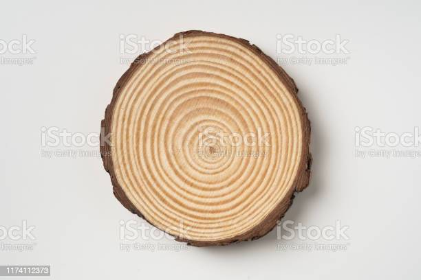 Photo of top view of wood piece with annual ring on white