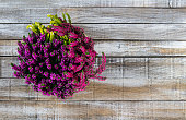 Top view on Calluna vulgaris, heath flower in rustic wicker planter on wood desk