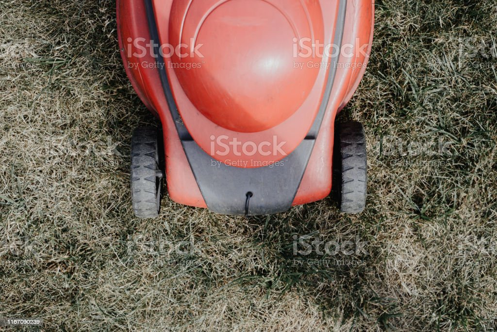 Work in the garden, spring cleaning. Care for the garden and grass.