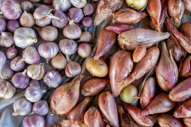 top uitzicht op biologische oogst van uien en knoflook liggend op linnen doek - sjalot stockfoto's en -beelden