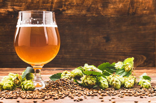 istock Top view on pint of beer with ingredients for homemade beer 1041019266