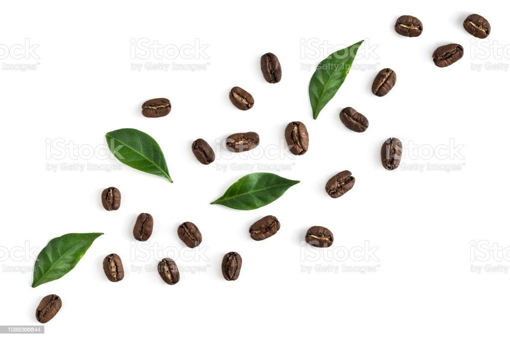 Vue de dessus sur les grains de café avec des feuilles blanc - Photo