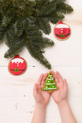 Christmas Tree Top View.Top View On Womans Hands Holding Homemade Christmas Tree Cookie On White Wooden Background With Spruce Branches And Decorations Christmas Holidays