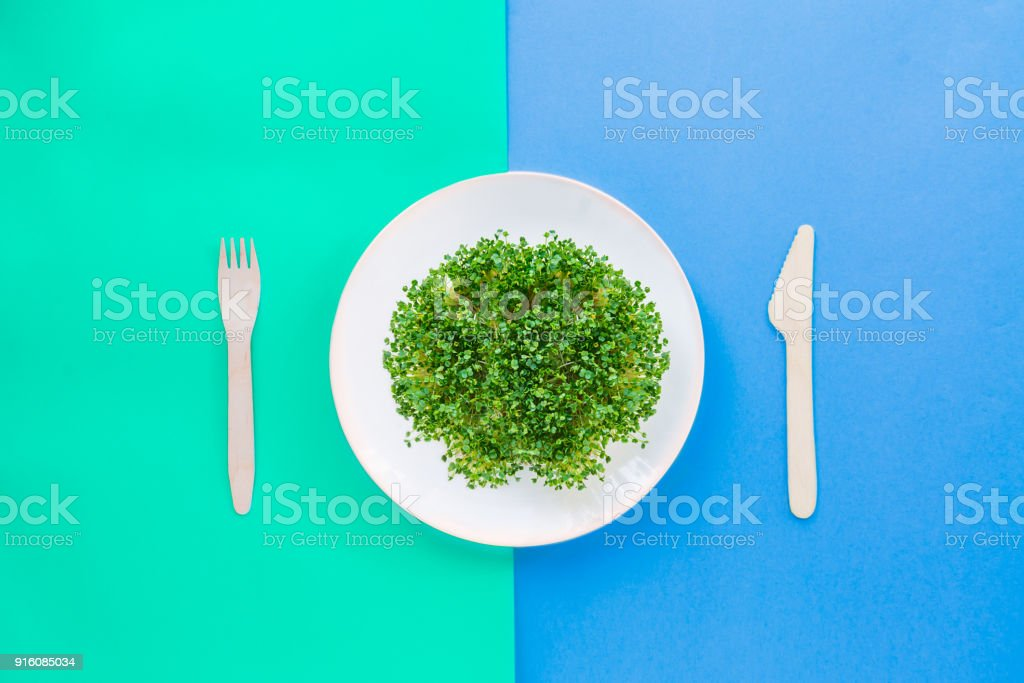 Top view plate with fresh organic sprout micro greens served with wooden cutlery on the bright double color background. Healthy Raw diet food concept. Copy space for text. Selective focus. stock photo