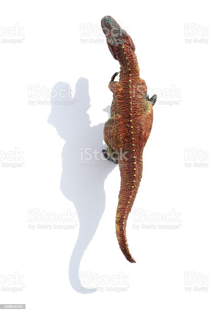 Vista de cima de um tiranossauro com sombra sobre um fundo branco - foto de acervo
