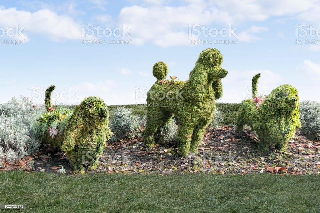 Topiaire groupe de chiens sur l'herbe. - Photo