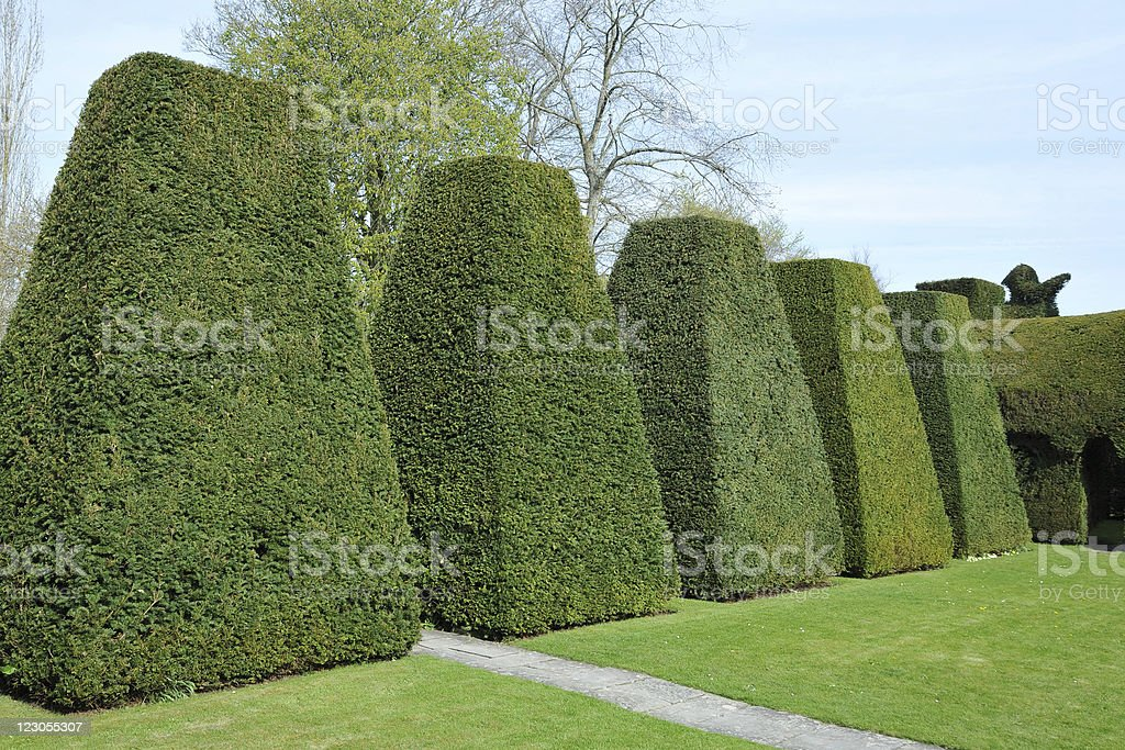 Topiary in a Formal Garden stock photo