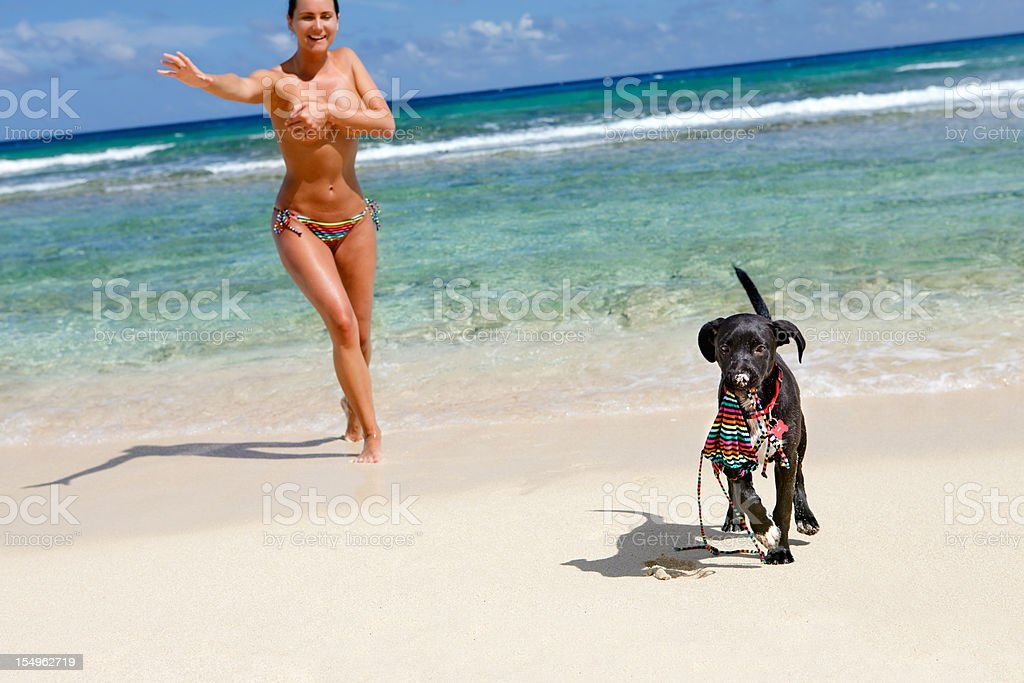 topless woman chasing a puppy with stolen bikini top stock photo