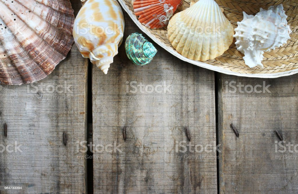 Topview frame decorate create from sea shell on wood plate. royalty-free stock photo