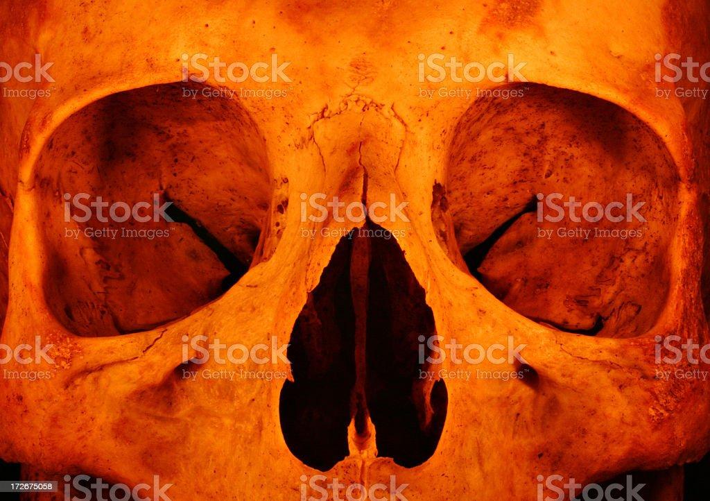 Torchlight Skull royalty-free stock photo