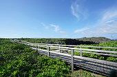鳥 ike または Shomoji 島、沖縄で鳥池