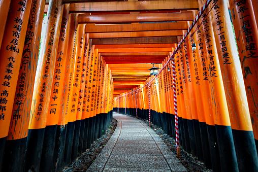 Japan - July 15, 2019 : Hundreds of Torii Gate Tunnel carving with the name of donators at Fushimi Inari Shrine, Fushimi, Kyoto