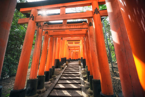 Torii gates in Fushimi Inari Shrine, Kyoto, Japan Kyoto, Japan - March 29, 2019: Torii gates in Fushimi Inari Shrine. torii gate stock pictures, royalty-free photos & images