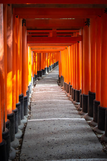 Torii gates of the Fushimi Inari Shrine in Kyoto, Japan stock photo