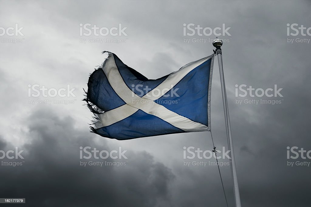 torn scottish flag in the storm stock photo