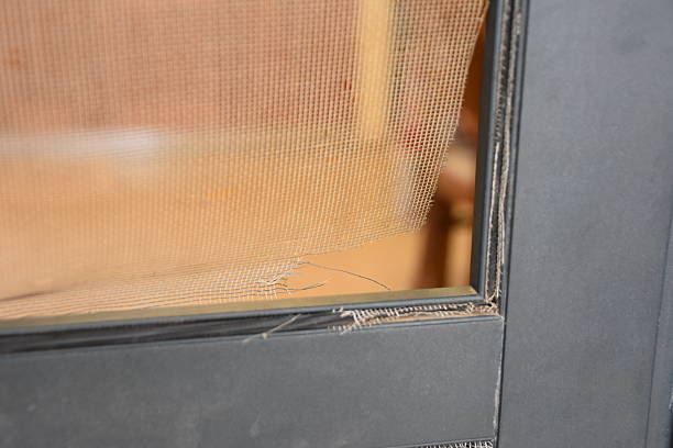 Rasgado Porta com tela - foto de acervo
