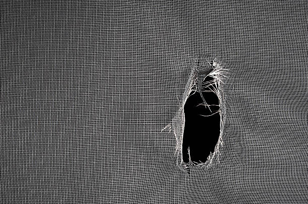 Torn window screen stock photo
