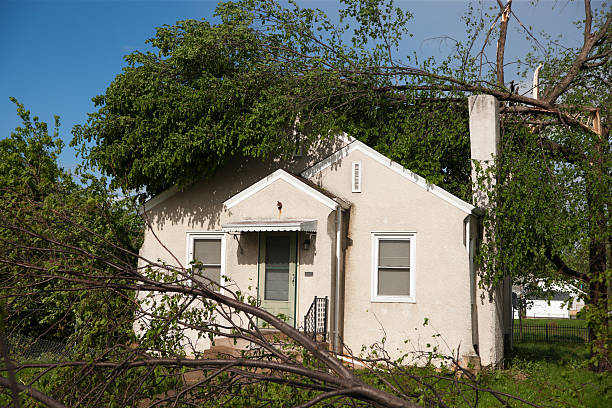 Tornado battered home. Fallen trees lay across a residential home after a tornado. knocked down stock pictures, royalty-free photos & images