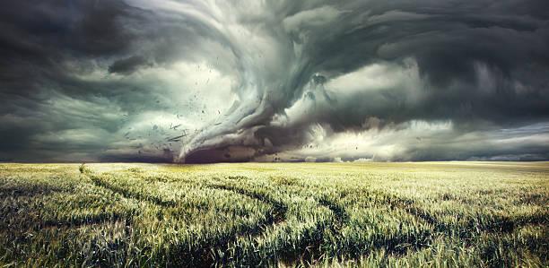 tornado em campo field - tornado - fotografias e filmes do acervo