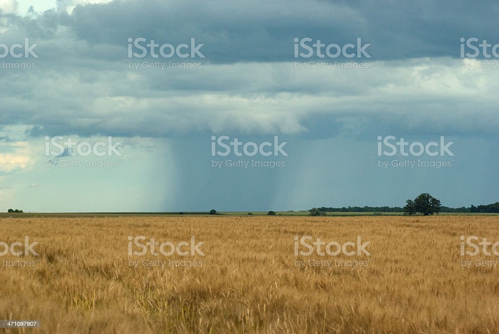 Tornado or Storm royalty-free stock photo