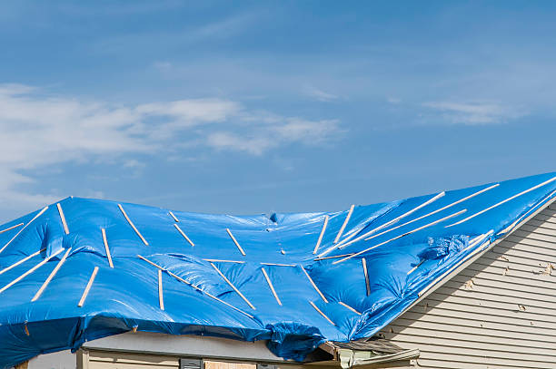 Tornado recovery