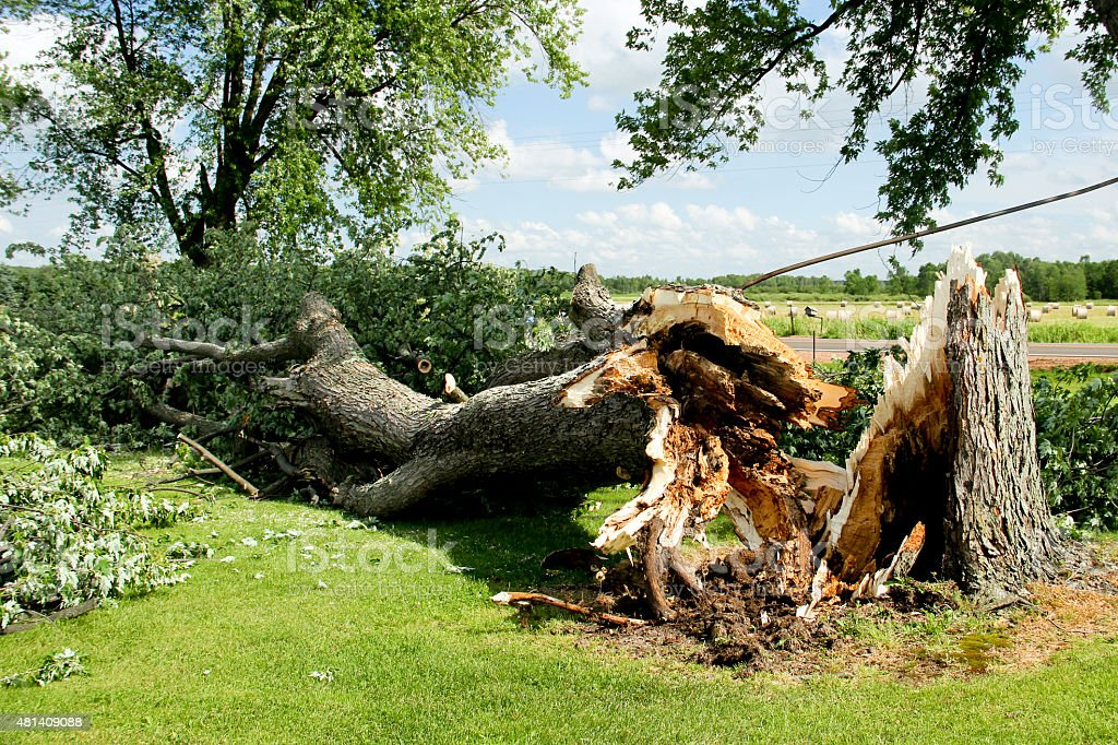 Tornado Storm Damage stock photo