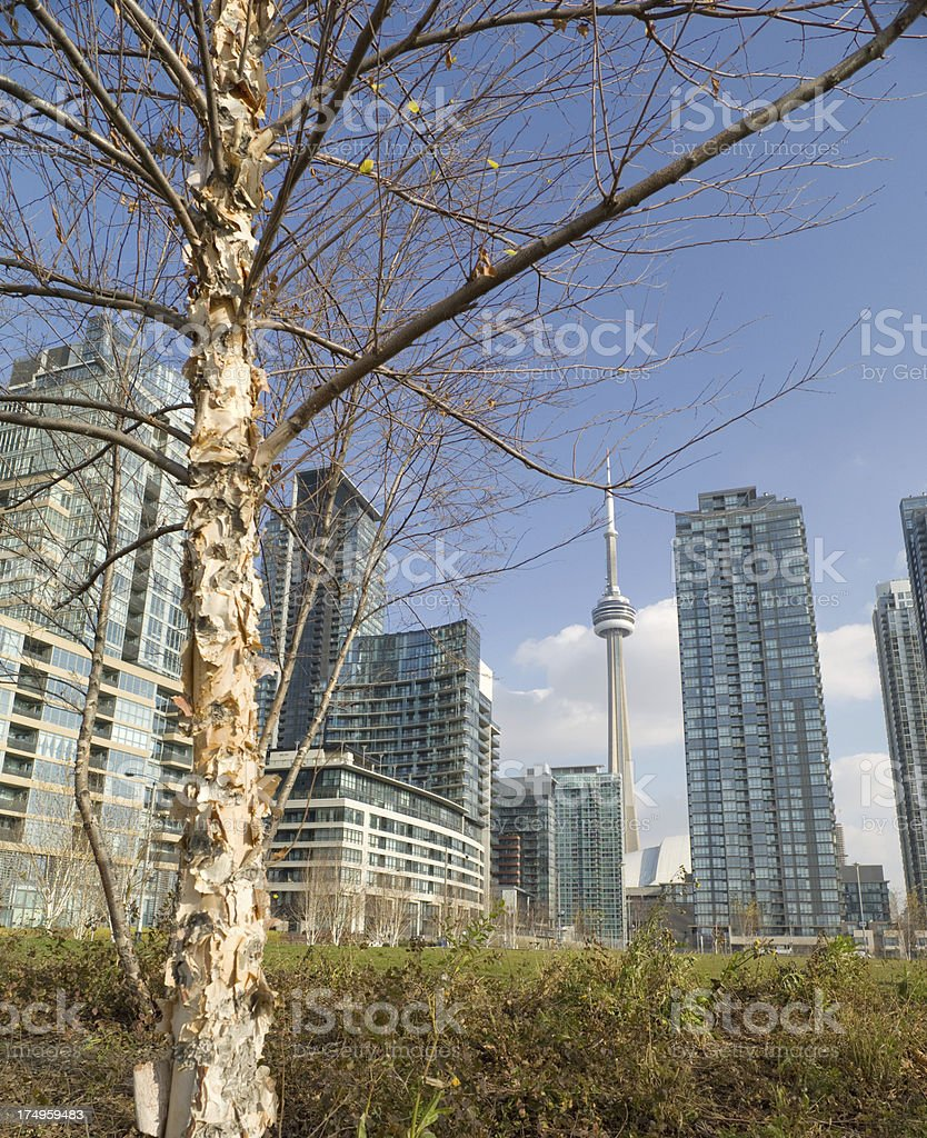 Toronto Condo City royalty-free stock photo
