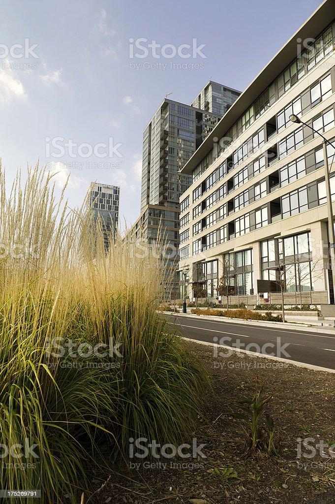 Toronto Condo City royalty-free stock photo
