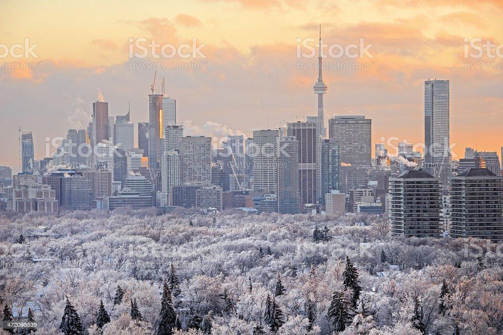 Картинки по запросу toronto winter