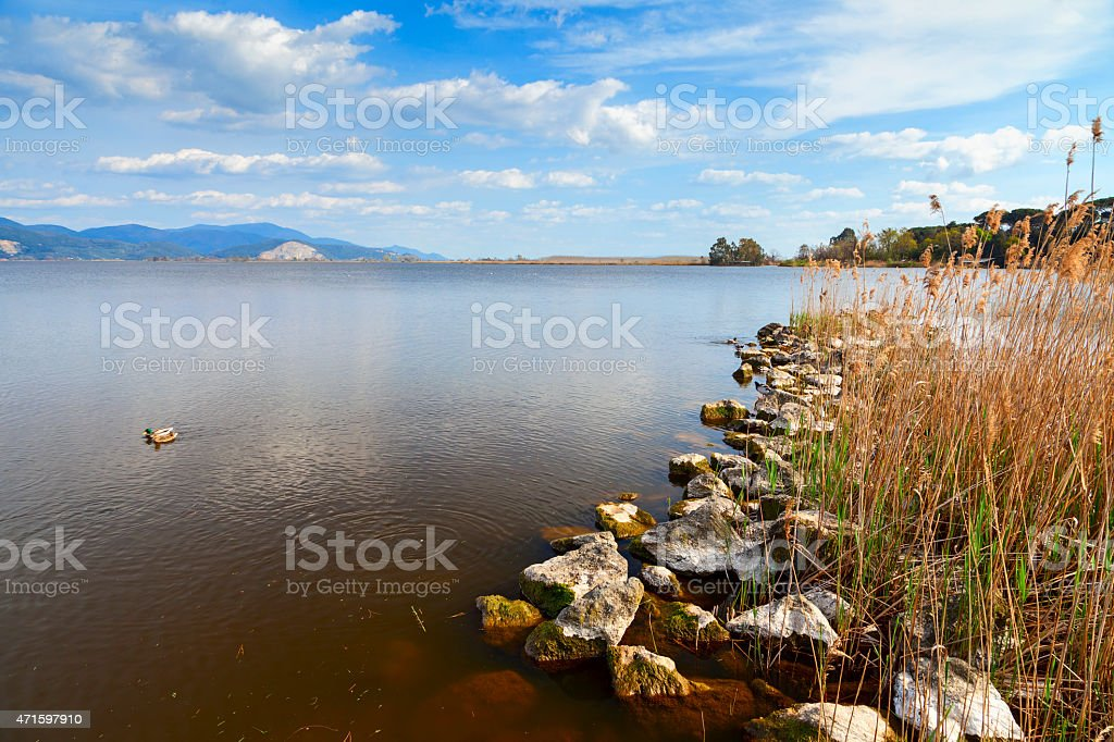 torre del lago view stock photo