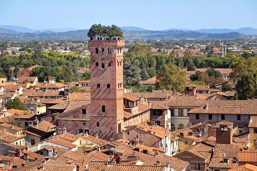istock Torre Guinigi in Lucca, Italy 1128872511