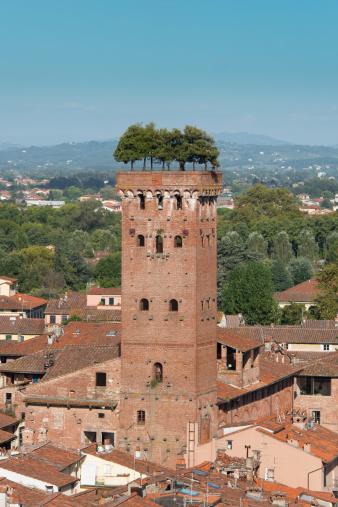 istock Torre Guinigi 512476203