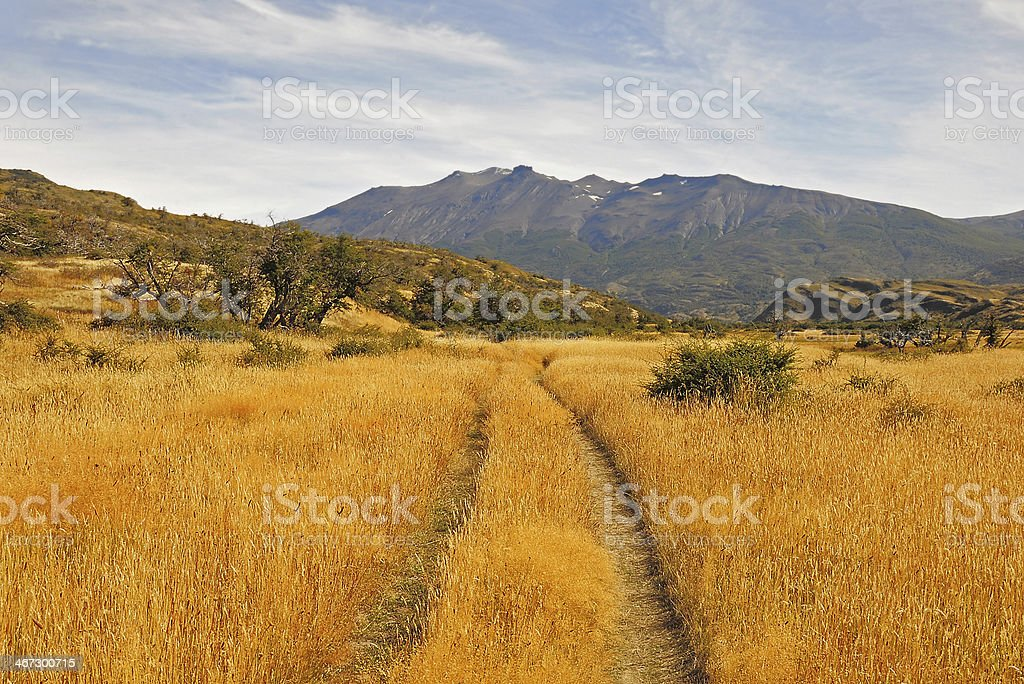 Torres del Paine National park. royalty-free stock photo