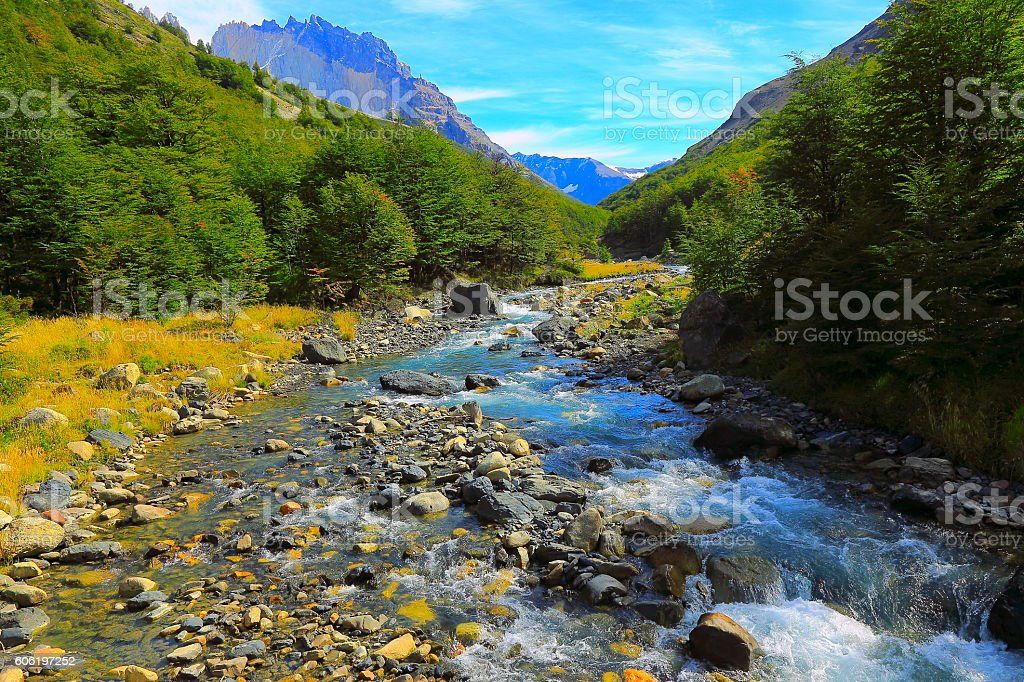Torres Del Paine, river stream, Chilean majestic Patagonia landscape woodland stock photo