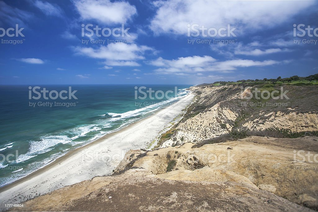 Torrey Pines stock photo