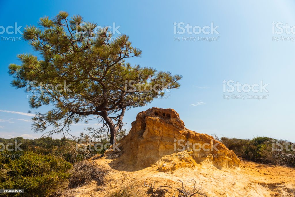 Torrey Pines State Reserve, San Diego stock photo