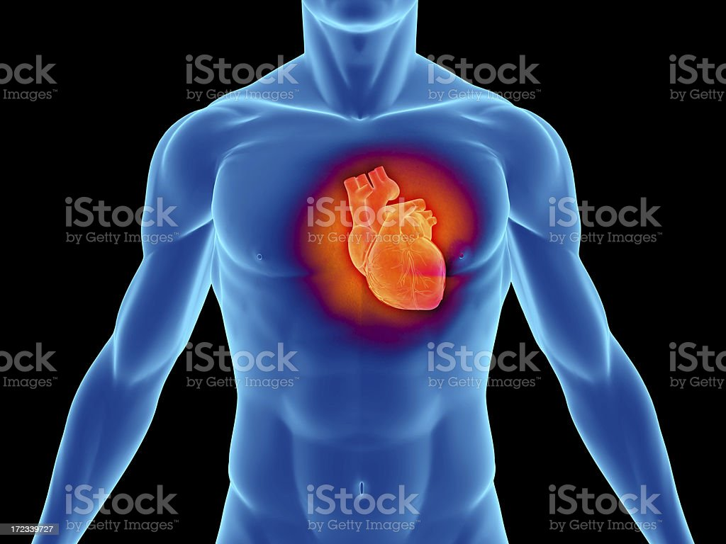 Torso of a man highlighting the heart stock photo
