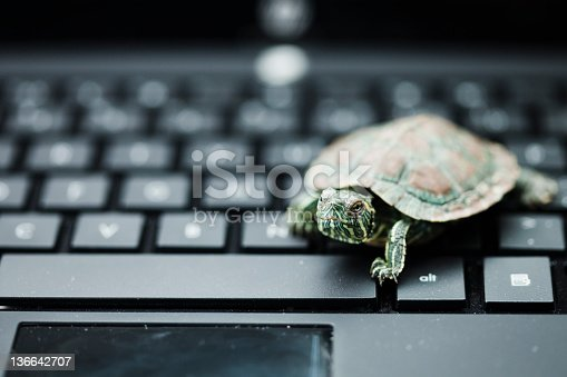 Tortoise and computer Concepts