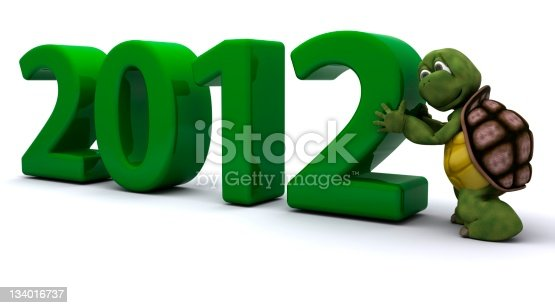 istock Tortoise Bringing the new year in 134016737