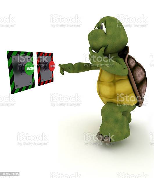 Tortoise deciding which button to push picture id465623695?b=1&k=6&m=465623695&s=612x612&h=4g72qbqe w6uphaodaemyqdxyaqj8f6cwr6djsvxb6w=