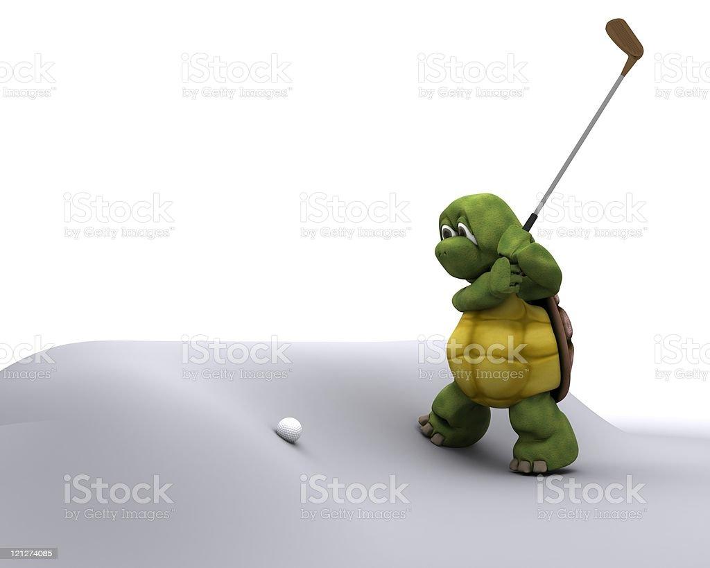 Tortoise Playing golf royalty-free stock photo