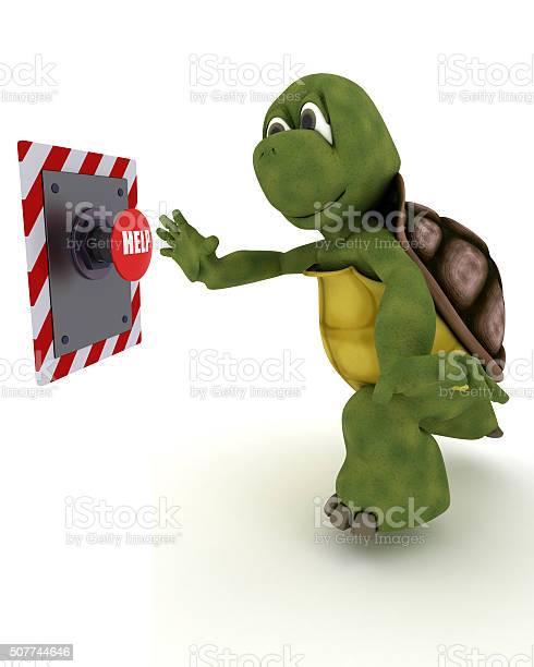 Tortoise pushing a button picture id507744646?b=1&k=6&m=507744646&s=612x612&h=aoxxsesr3afunvry3uxmocqdzvrgqc o2vfbl qu ea=
