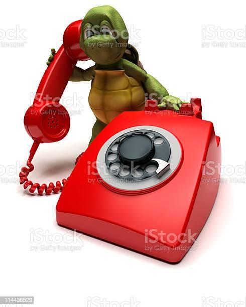 Tortoise with a telephone picture id114436529?b=1&k=6&m=114436529&s=612x612&h=ehzqhq1filcklrba2iokadvrunuen jxjk2ciunv6sg=