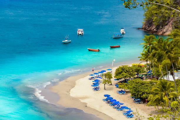 tortuga island costa rica - costa rica stockfoto's en -beelden